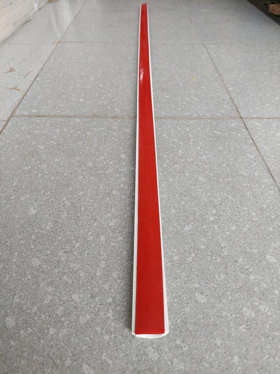 Ghen bán nguyệt, nẹp sàn bán nguyệt D30 30x12 TIẾN PHÁT